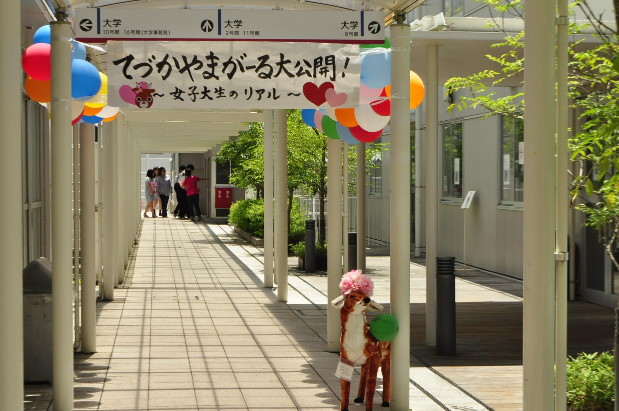 ようこそ! 帝塚山大学へ。
